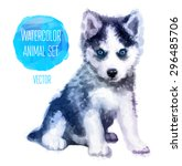 huskies hand painted... | Shutterstock .eps vector #296485706