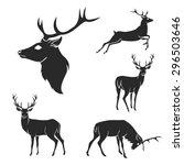 set of black forest deer... | Shutterstock .eps vector #296503646