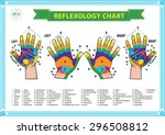 foot and hand reflexology chart ... | Shutterstock .eps vector #296508812