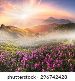high in ukraine   on the... | Shutterstock . vector #296742428