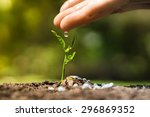 hand nurturing and watering a... | Shutterstock . vector #296869352