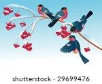 branch of wild ash with berries ...   Shutterstock .eps vector #29699476