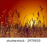 Grass vector silhouette and sunset. Ideally for your use in design. - stock vector