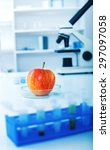 chemical laboratory of the food ... | Shutterstock . vector #297097058
