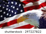 north american bald eagle on... | Shutterstock . vector #297227822