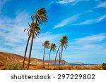 almeria in cabo de gata playazo ... | Shutterstock . vector #297229802
