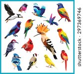Birds Set Of Colorful Low Poly...