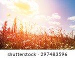 wildflowers field and blue sky... | Shutterstock . vector #297483596