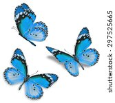 Stock photo three blue butterfly isolated on white background 297525665