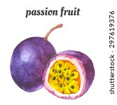 passion fruit. vector... | Shutterstock .eps vector #297619376