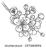 hand drawing apple tree branch... | Shutterstock .eps vector #297684896