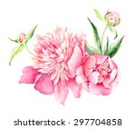 hand drawn watercolor... | Shutterstock .eps vector #297704858