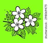 apple blossom element on green... | Shutterstock .eps vector #298069475