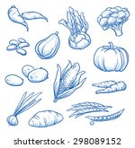 set of fresh vegetables  turnip ... | Shutterstock .eps vector #298089152