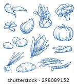 set of fresh vegetables  turnip ... | Shutterstock .eps vector #298089152