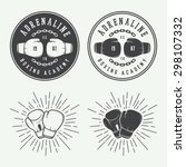 boxing and martial arts logo... | Shutterstock .eps vector #298107332