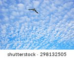 cloudscape and flying blurred... | Shutterstock . vector #298132505