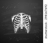 rib cage on blackboard | Shutterstock .eps vector #298167692