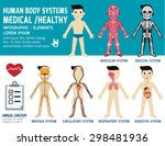 human body systems  annual... | Shutterstock .eps vector #298481936