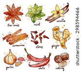 herbs and spices decorative... | Shutterstock .eps vector #298594466