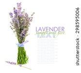 lavender flowers  lavandula ...   Shutterstock . vector #298595006