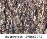 Small photo of Tree Bark Close Up Brown and Tan Marled