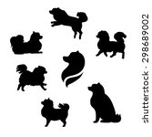 ddwarf spitz vector icons and... | Shutterstock .eps vector #298689002