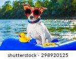 jack russell dog sitting on an... | Shutterstock . vector #298920125