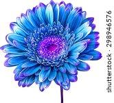 vector illustration of bright... | Shutterstock .eps vector #298946576