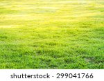 image of grass field with dew... | Shutterstock . vector #299041766