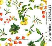 watercolor physalis  apples and ... | Shutterstock . vector #299051588