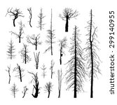 Dead Trees Silhouettes