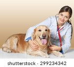 Stock photo veterinarian vet dog 299234342