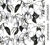 black and white watercolor... | Shutterstock . vector #299260655