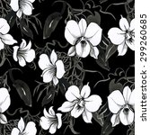 black and white watercolor... | Shutterstock . vector #299260685