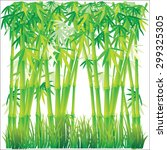 Bamboo Background Vector...