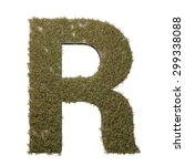 letter r made of dead grass ...