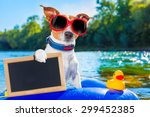 jack russell dog sitting on an... | Shutterstock . vector #299452385