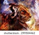 Portrait Lion And Tiger Face ...