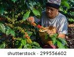 salavan lao p d r   november 8... | Shutterstock . vector #299556602