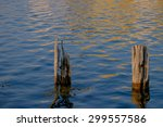 Two Wooden Pilings At Sundown