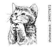 lovely kitten hand drawn vector ... | Shutterstock .eps vector #299577872