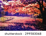 colorful of country side | Shutterstock . vector #299583068
