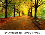 autumn in city park. colorful... | Shutterstock . vector #299947988