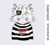 persian cat pirate  nautical... | Shutterstock .eps vector #300018842
