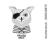 owl pirate  nautical poster ... | Shutterstock .eps vector #300018875