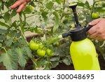 Spraying Trees. The Gardener...