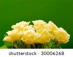 yellow roses bouquet isolated with clipping path on green background - stock photo