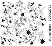 vector hand drawn floral... | Shutterstock .eps vector #300062732