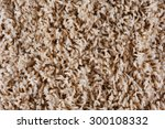 texture of a brown carpet with... | Shutterstock . vector #300108332